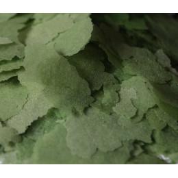 Корм AQUAV Spirulina Flake спирулина в хлопьях, 20гр (наразвес)